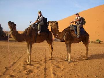 Lawrence & Christine W. camels